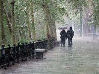 آماده باش ۱۵هزار نیروی شهرداری تهران همزمان با بارش بارندگی