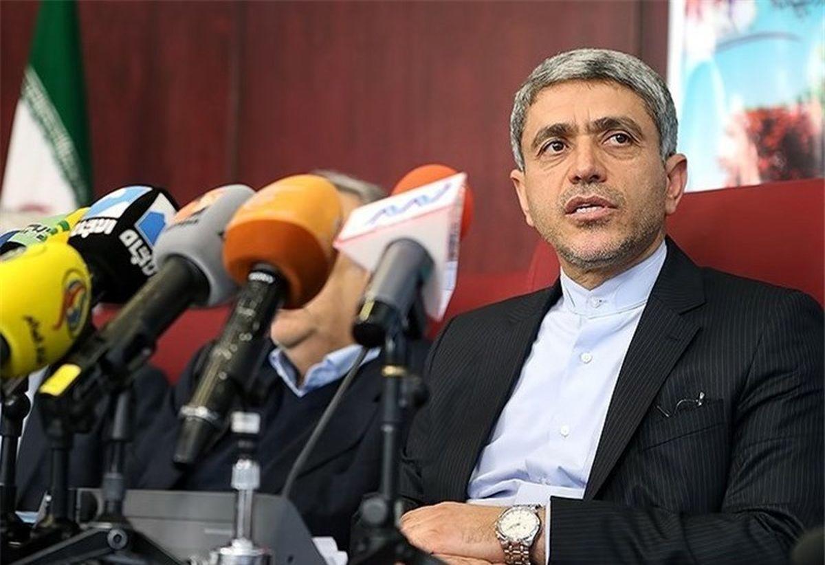 طیب نیا: گسترش همکاریهای دوجانبه ایران و مجارستان