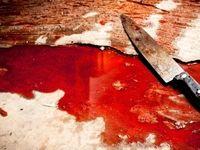 قاتل مادر زن پس از ۹سال در چنگ قانون افتاد
