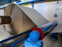 تخصیص ارز ۳۸۵۰ تومانی برای تامین کاغذ