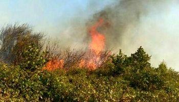 ورود قوه قضائیه به آتشسوزی جنگلهای ارسباران