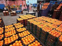 فردا؛ توزیع سیب و پرتقال تنظیم بازاری