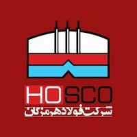 تقدیر رییس کل بانک مرکزی ایران از مدیرعامل فولاد هرمزگان