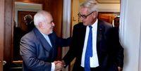 دیدار ظریف با نخست وزیر اسبق سوئد +عکس