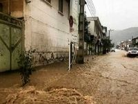 اعطای کمکهای مالی بلاعوض به سیلزدگان گلستان