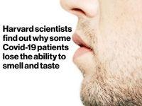 کشف علت از کار افتادن بویایی و چشایی برخی مبتلایان به کووید-19