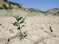 هشدار: امکان وقوع خشکسالی شدید در ایران