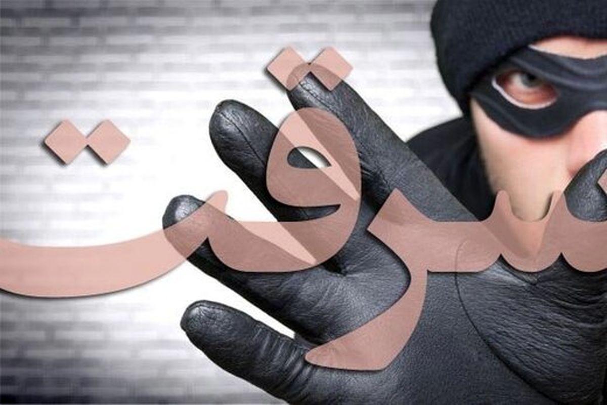 سرقتهای مرد زندانی در مرخصی کرونایی