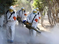 آخرین اخبار از ویروس کرونا در جهان
