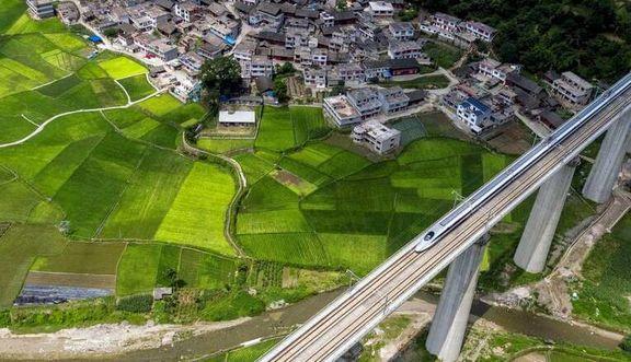 عبور قطار پرسرعت از میان مزارع +عکس