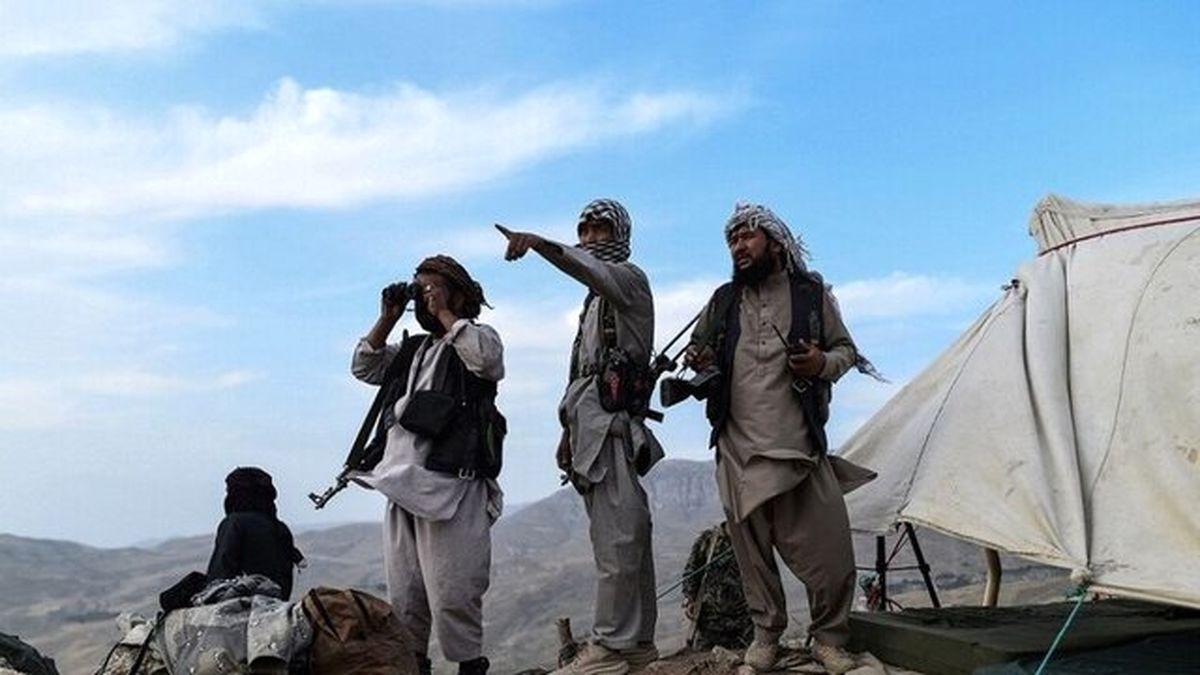 طالبان: قصد نداریم با زور وارد کابل شویم