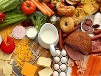صادرات مواد غذایی روسی به چین و ترکیه بیشتر میشود