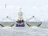 فعالیت کشتیهای چینی در آبهای جنوب کشور تداوم یافت