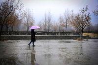 بارندگی افزایش پیدا میکند