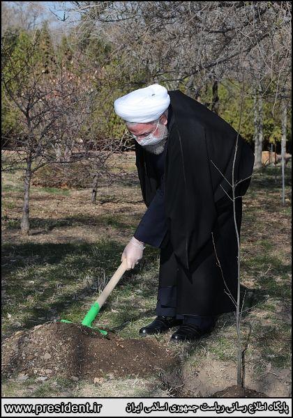 روحانی یک نهال سیب در باغ گیاهشناسی غرس کرد