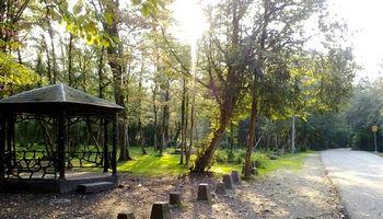 پارک جنگلی سیسنگان تکهتکه میشود