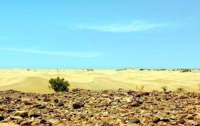 زیباترین و تمیزترین ساحل ایران +تصاویر