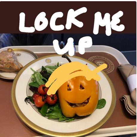 شام تمسخر آمیز هالووین در هواپیما ترامپ+تصاویر
