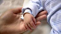 تولد نوزادان پسر بیشتر شد