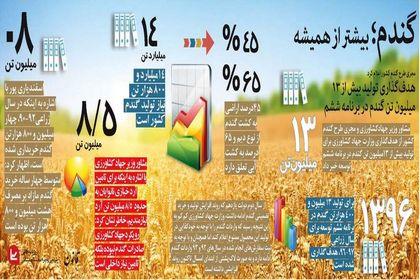 تولید ۱۳میلیونتن گندم در برنامه ششم +اینفوگرافیک