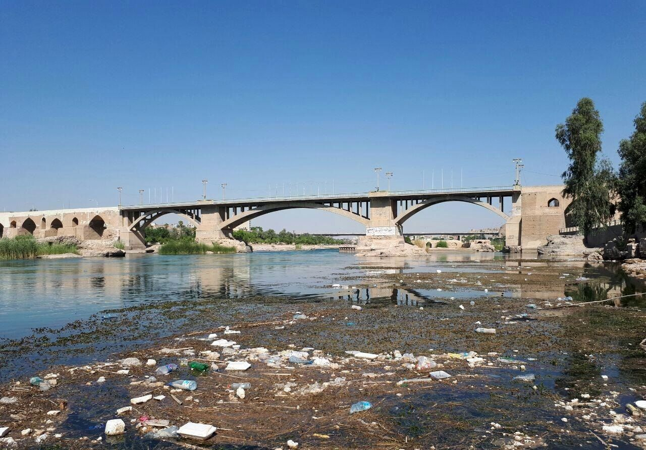 رشد جلبکها و خزهها و آلودگی رودخانه دز