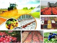صادرات بخش کشاورزی و غذا از ۷میلیارد دلار گذشت