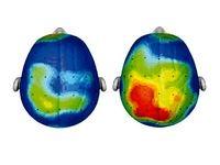 ورزش، حال مغز را خوب میکند