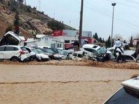 هزینه خودروهای خسارت دیده در سیل شیراز پرداخت میشود
