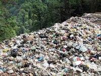 لزوم بازنگری قیمت برق تولیدی از زباله سوزها توسط هیات دولت