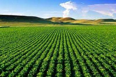 ارزش افزوده توصیههای هواشناسی برای حوزه کشاورزی