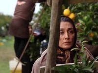 بازیگر زن ایرانی برگزیده جشنواره تورنتو شد +عکس