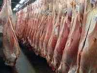گوشت ارزان شد؟