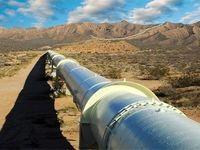 هند پیشتاز تقاضای نفت