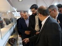 کروز سهم قابل توجهی در تامین قطعات ایران خودرو را دارد