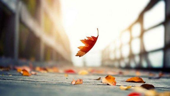 افزایش احساس غم در پاییز نشانه افسردگی نیست