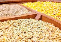 مدیرعامل بزرگترین شرکت تولید خوراک دام وطیور شمال دستگیر شد