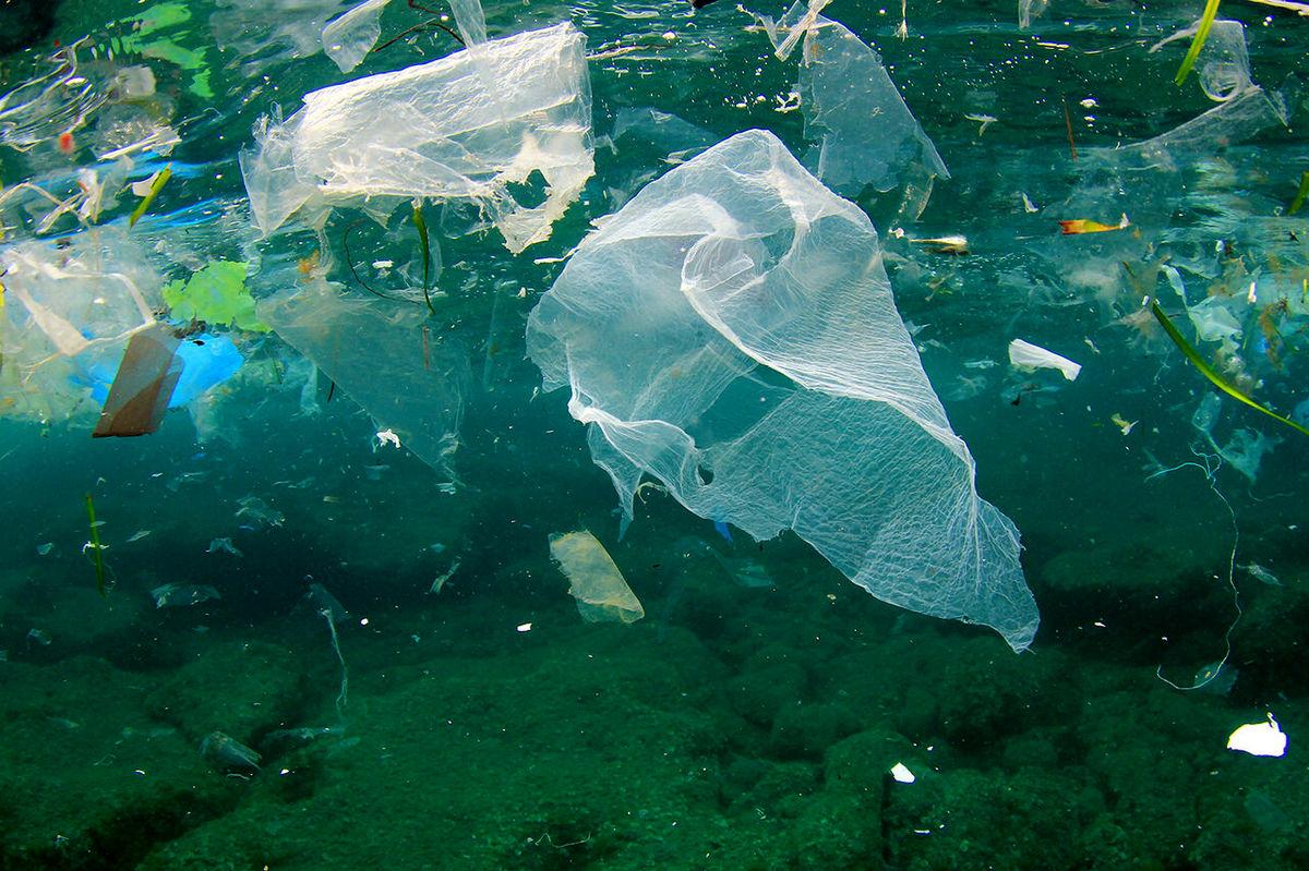 فاجعه پلاستیکی در اقیانوس ها