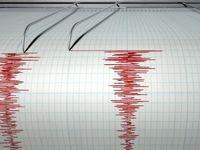 زلزله مرز کرمان و هرمزگان را لرزاند