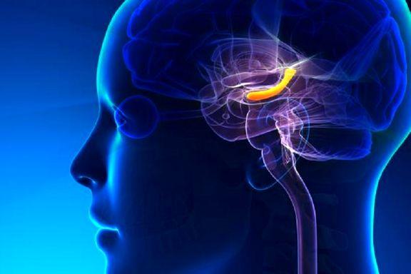 حافظه قوی باعث افسردگی است