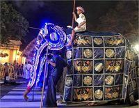 رفتار ظالمانه با فیلِ در حال مرگ +تصاویر