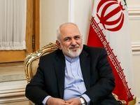 دیدار رئیس کمیته صلیب سرخ با ظریف +عکس