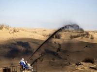 مالچ محیط زیست ایران را «آسفالت» میکند!