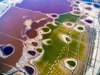تغییر رنگ دریای مرده چین به جاذبه گردشگری تبدیل شد +تصاویر