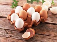 افزایش 40درصدی قیمت تمام شده تولید تخممرغ نسبت به ابتدای سال قبل/ پیشنهاد افزایش قیمت مصوب به 6400تومان