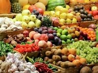 تعادل بین واردات و تولید داخلی محصولات کشاورزی مشخص نیست/ صادرات در قبال واردات میوه نداریم