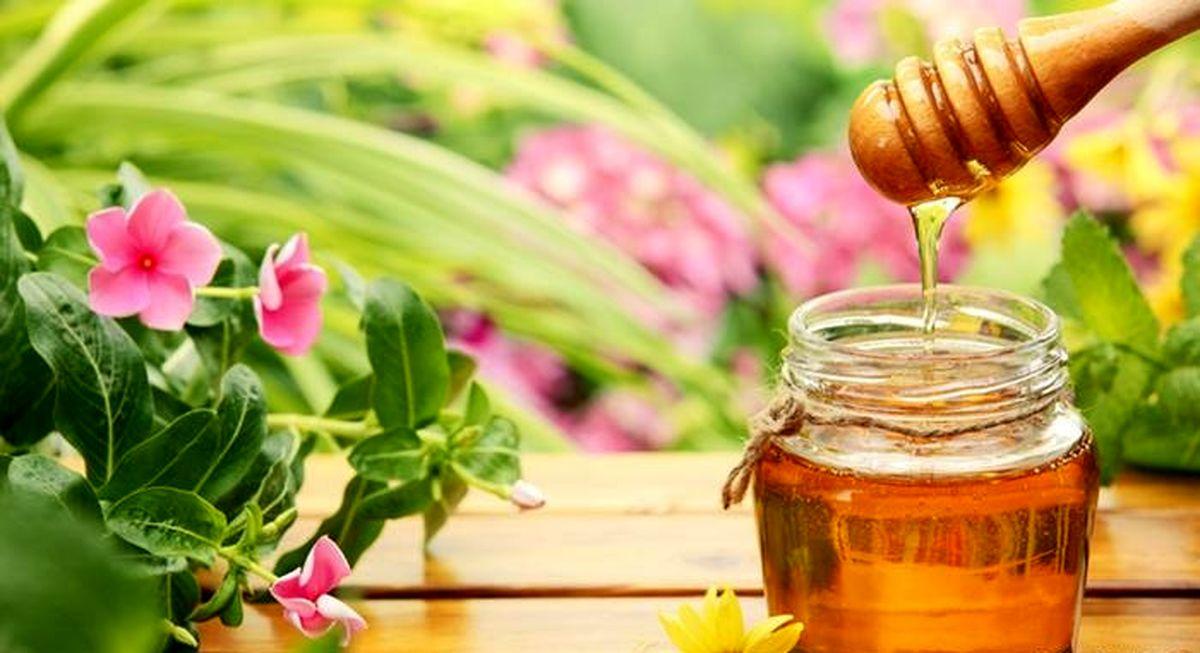 ۵۰هزار تومان؛ قیمت عسل اصل