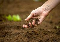 بررسی مغایرت لایحه حفاظت از خاک در مجمع تشخیص مصلحت نظام