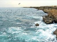 آب دریایعمان باید منتقل شود