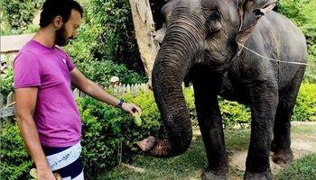 کامبیز دیرباز در تایلند چه میکند؟ +عکس