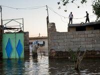 ویدیویی تکاندهنده از بازگشت سیلزدگان به شوش